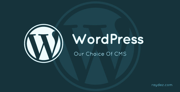 professional web design using wordpress